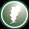lihuen logo